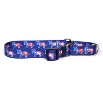 DEM Donkeys Martingale Dog Collar