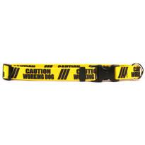 1 Inch - Caution Working Dog Dog Collar