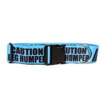 2 Inch - Caution Leg Humper Dog Collar