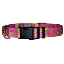 Pink Paisley Break Away Cat Collar