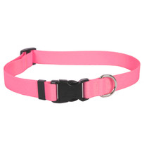 Light Pink Simple Solid Dog Collar