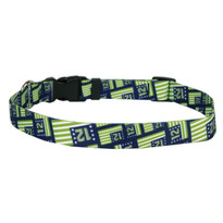 12th Dog Flags Dog Collar with Tag-A-Long