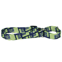 12th Dog Flags Martingale Dog Collar