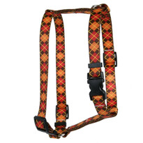 Argyle Fall Roman Style H Dog Harness