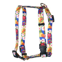 Lovebirds Roman Style H Dog Harness