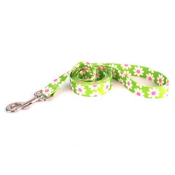 Green Daisy Dog Leash