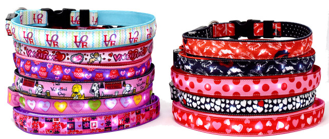 Light Up Hot Dog Safety Collar - Valentines Day Theme