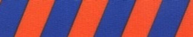 Team Spirit Orange and Blue EZ-Grip Dog Leash