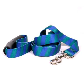 Team Spirit Blue and Green EZ-Grip Dog Leash