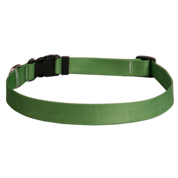 Solid Kelly Green Dog Collar