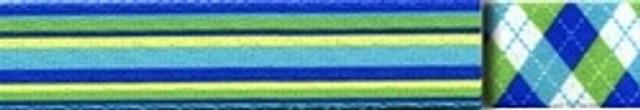 Blue and Green Stripes Waist Walker