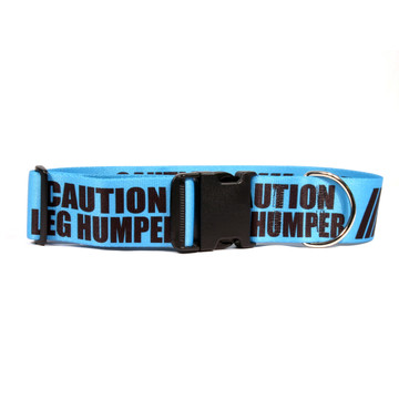 2 Inch - Caution Leg Humper Dog Collar