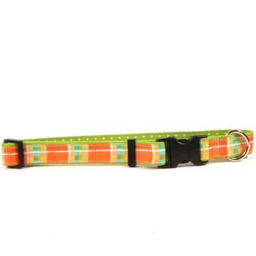Madras Orange on Green Polka Grosgrain Ribbon Collar