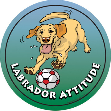 Labrador Attitude Magnet
