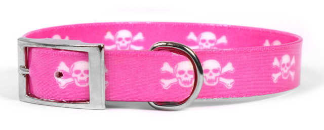 Pink Skulls Elements Dog Collar