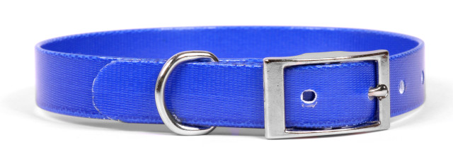 Solid Royal Blue Elements Dog Collar