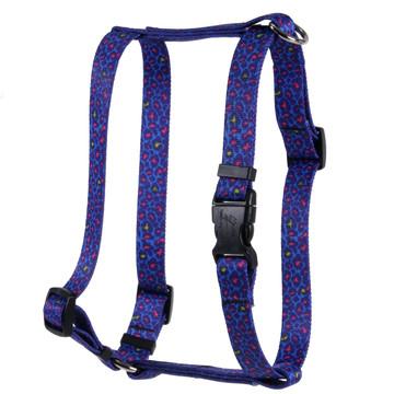 Neon Leopard Roman Style H Dog Harness