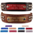 SuperStud Name Plate Leather Dog Collar