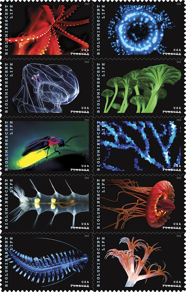 Bioluminescent Life Stamps