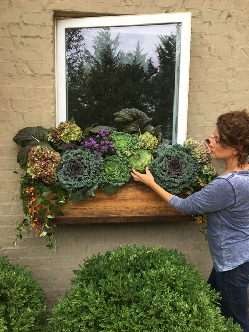 Transition Window Box Flowers from Summer to Fall