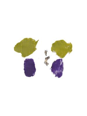 Butterfly Green 2