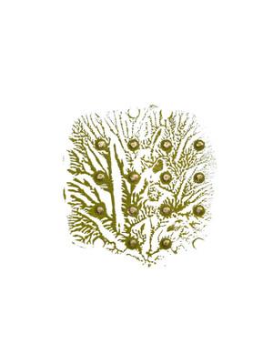 Green Golden Imprint 6