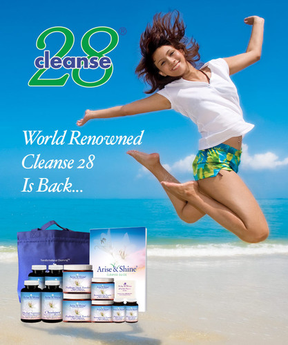 Cleanse 28 (Special)