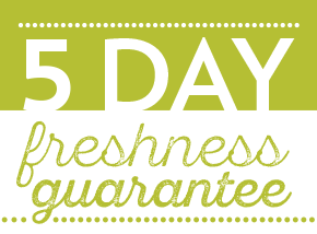 fof-day-guarantees-5day.png