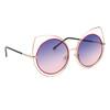 Women's Fashion Sunglasses - Style #6171 Pink