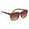 DE™ Fashion Sunglasses - Style #DE5096 Tortoise