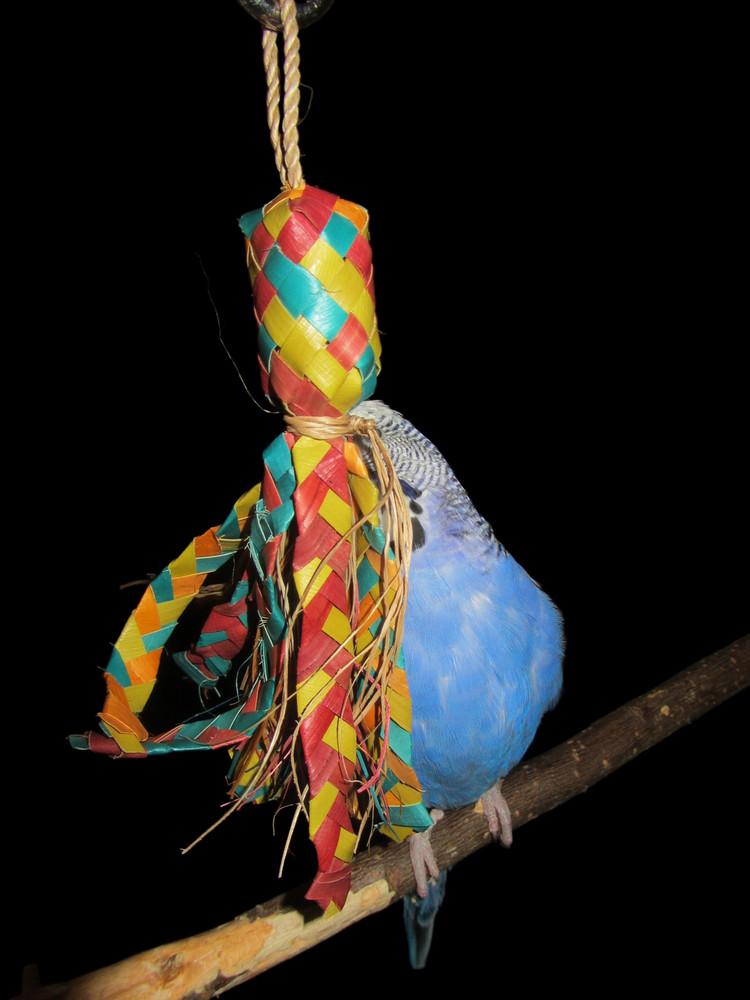 Bird Candy