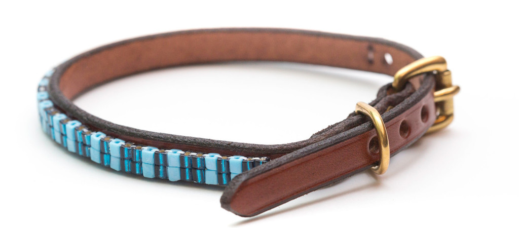 Blue Martini Pet Collar