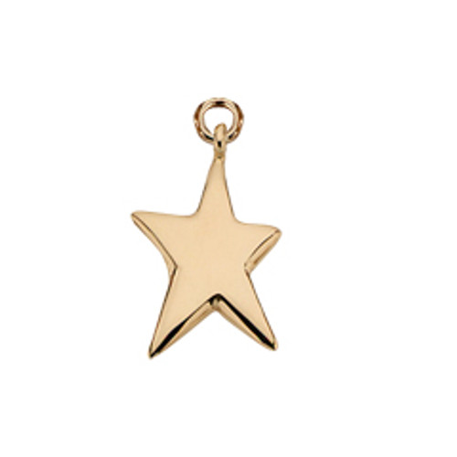 14kt Shining Star Charm
