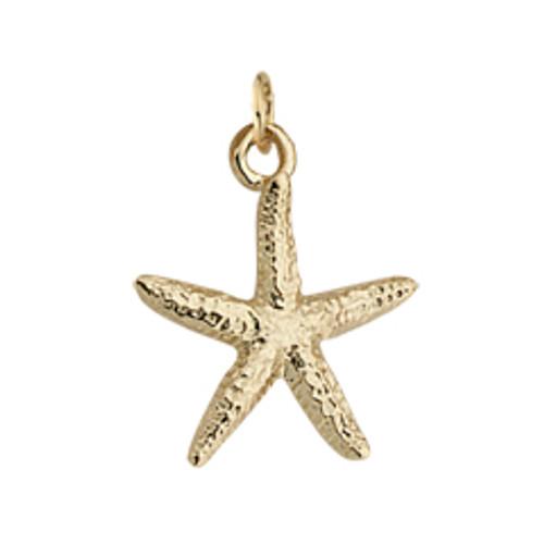 14kt Sea Star Charm