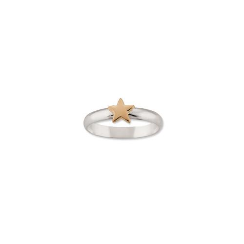 Sterling & 14kt Gold Talisman Star Ring