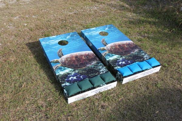 Cornhole boards with loggerhead graphics