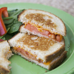 grilled cheese with tomato stove top cooking
