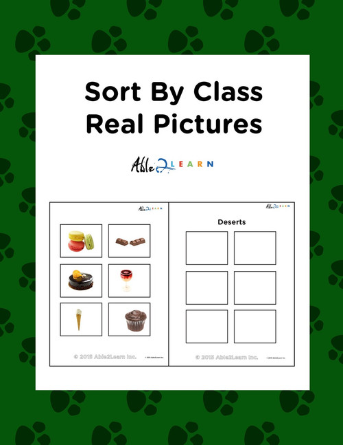 Sort By Class Program With Sorting Mat: Using Photographs: Pages 12
