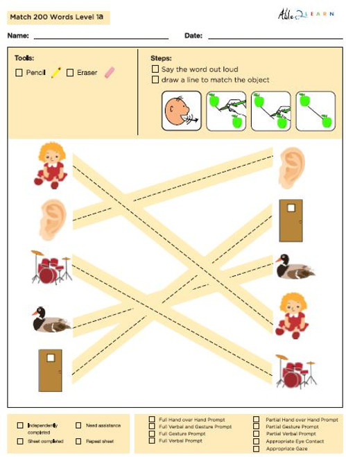 Identical Picture  Matching Program with ABLLS-R™ Words (Lv. 1)