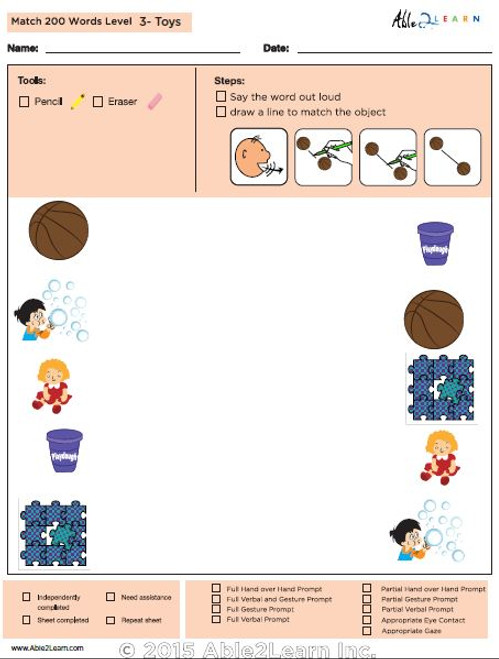 Toys Identical Picture  Matching Program with ABLLS-R™ Words (Lv. 3)