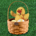 Peterboro Baby Easter Basket