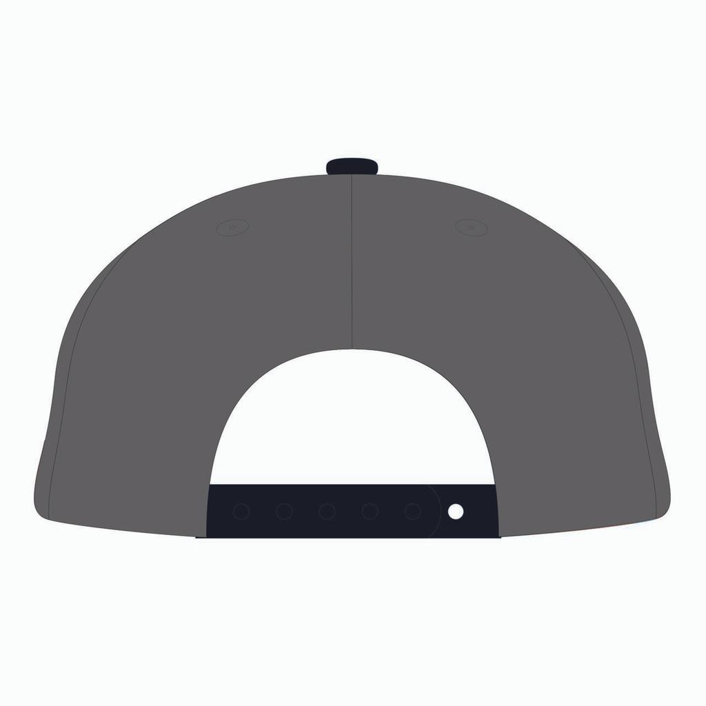 Back of grey baseball hat.