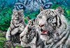 Majestic Eyes - 500pc Glow in the Dark Jigsaw Puzzle by Masterpieces (discon)