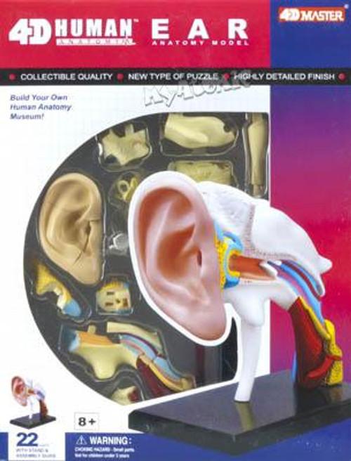 4d Human Ear Educational Puzzle | SeriousPuzzles.com