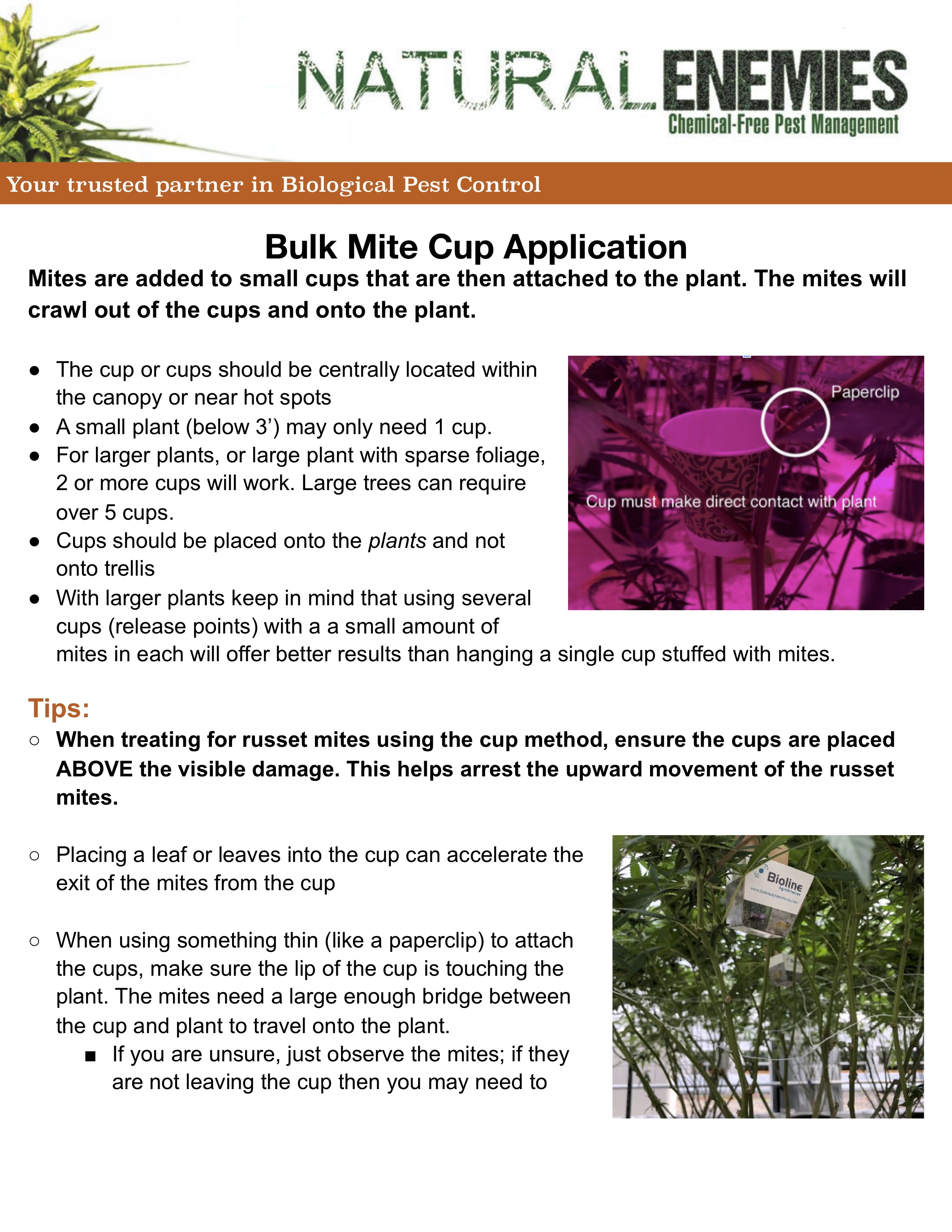 application-directions-for-mites-cup-applicaitons.jpg