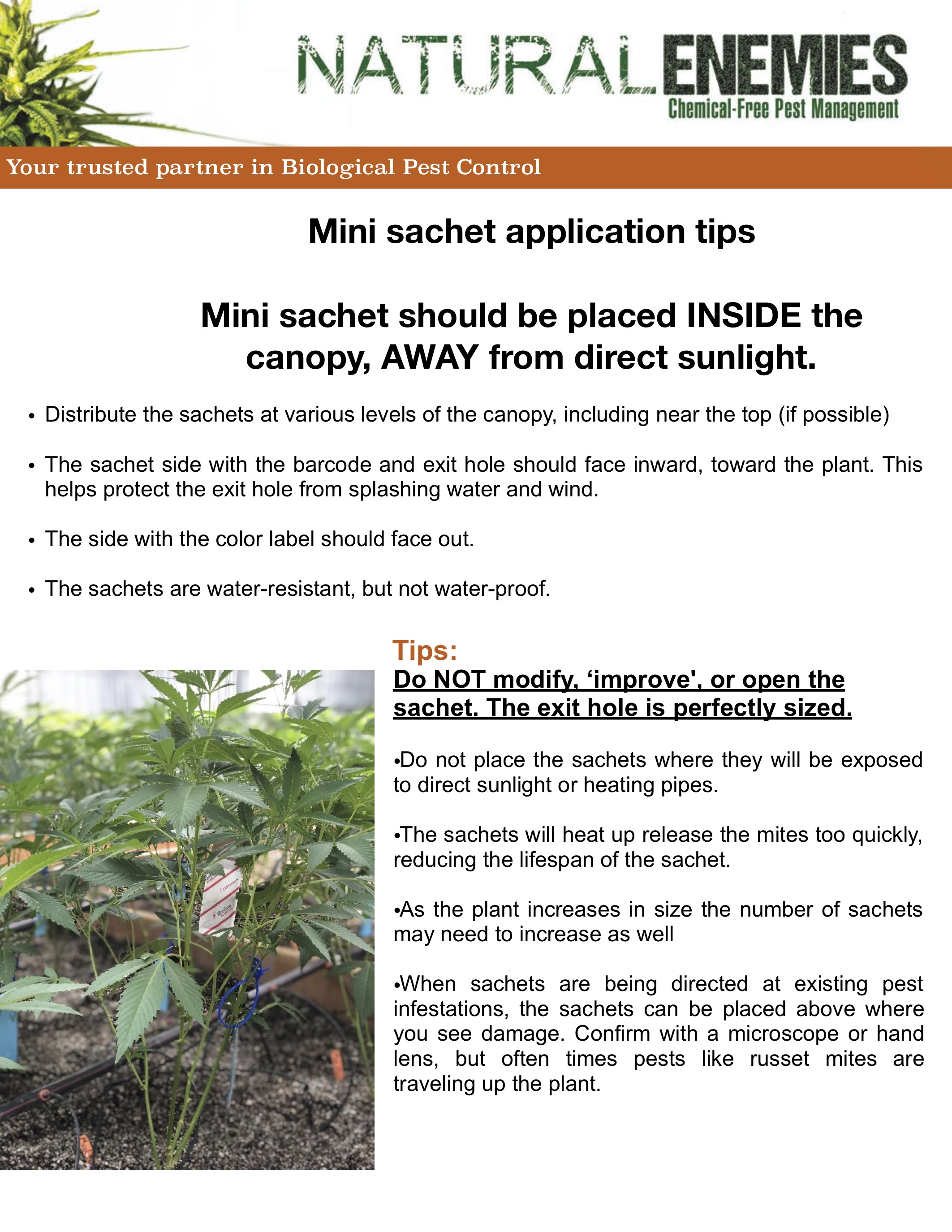 application-directions-for-mites-mini-sachets.jpg