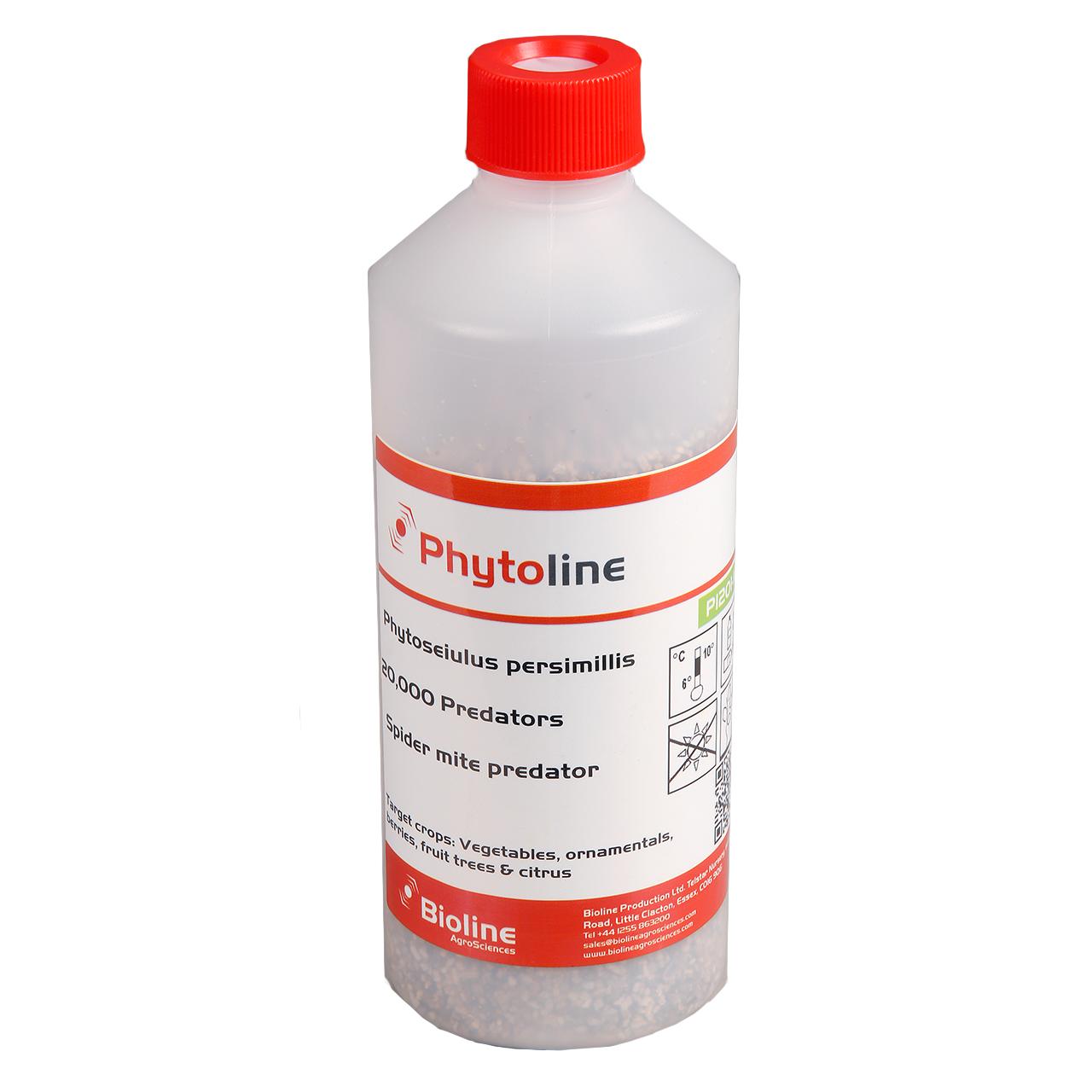 persimilis-phytoseiulus-persimilis-20-000-count-bottle.png