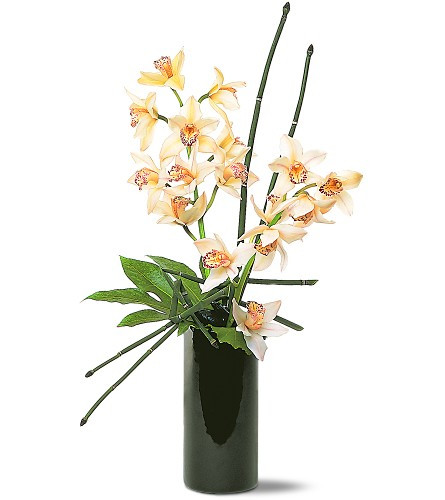 Artful Orchids - Platinum Collection - Very Fancy!