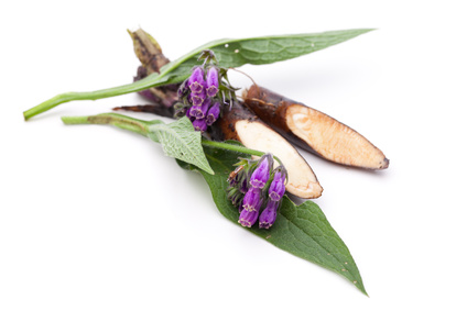 raw-allantoin-leaf-flower-ingredient-mineral-makeup.jpg