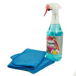 Glass Cleaning Kit*